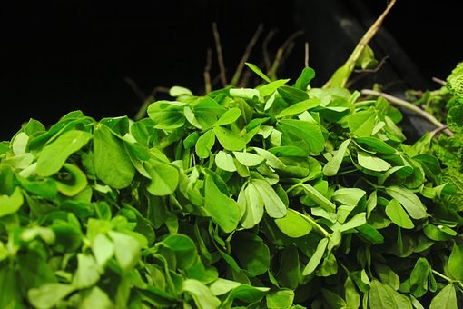 Benefits and Side-Effects of Fenugreek Leaves (Kasuri Methi) in Hindi.