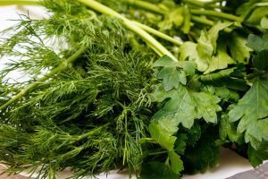 सोआ के फायदे और नुकसान। Benefits and Side-Effects of Dill (Sowa) in Hindi