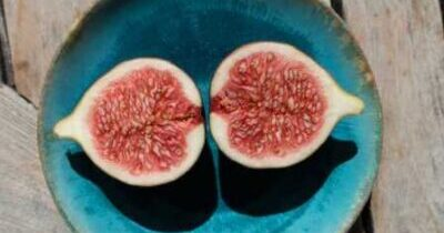 Benefits of Figs in Hindi