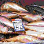 Benefits of mackerel fish